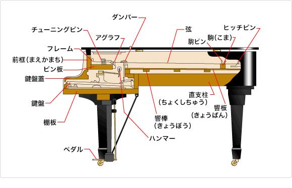 グランドピアノ内部詳細